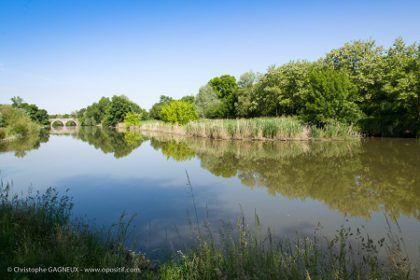qualité cours eau SMBAA